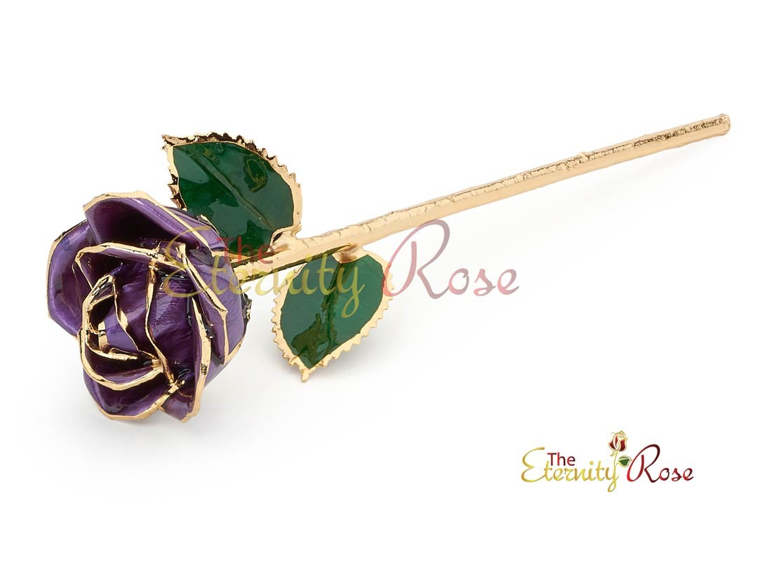 Gifts For Her Purple Glazed Gold Dipped Rose