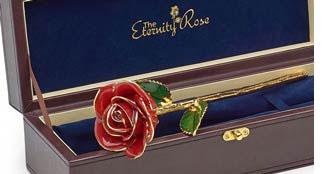 Red Glazed Eternity Rose