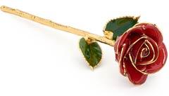 Glazed Eternity Rose